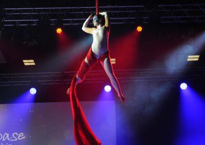 Synchronized Aerial Silks at The Ricoh