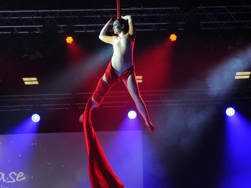 Synchronized Aerial Silks at The Ricoh